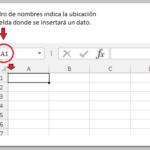 Introducción A Las Hojas De Cálculo En Excel